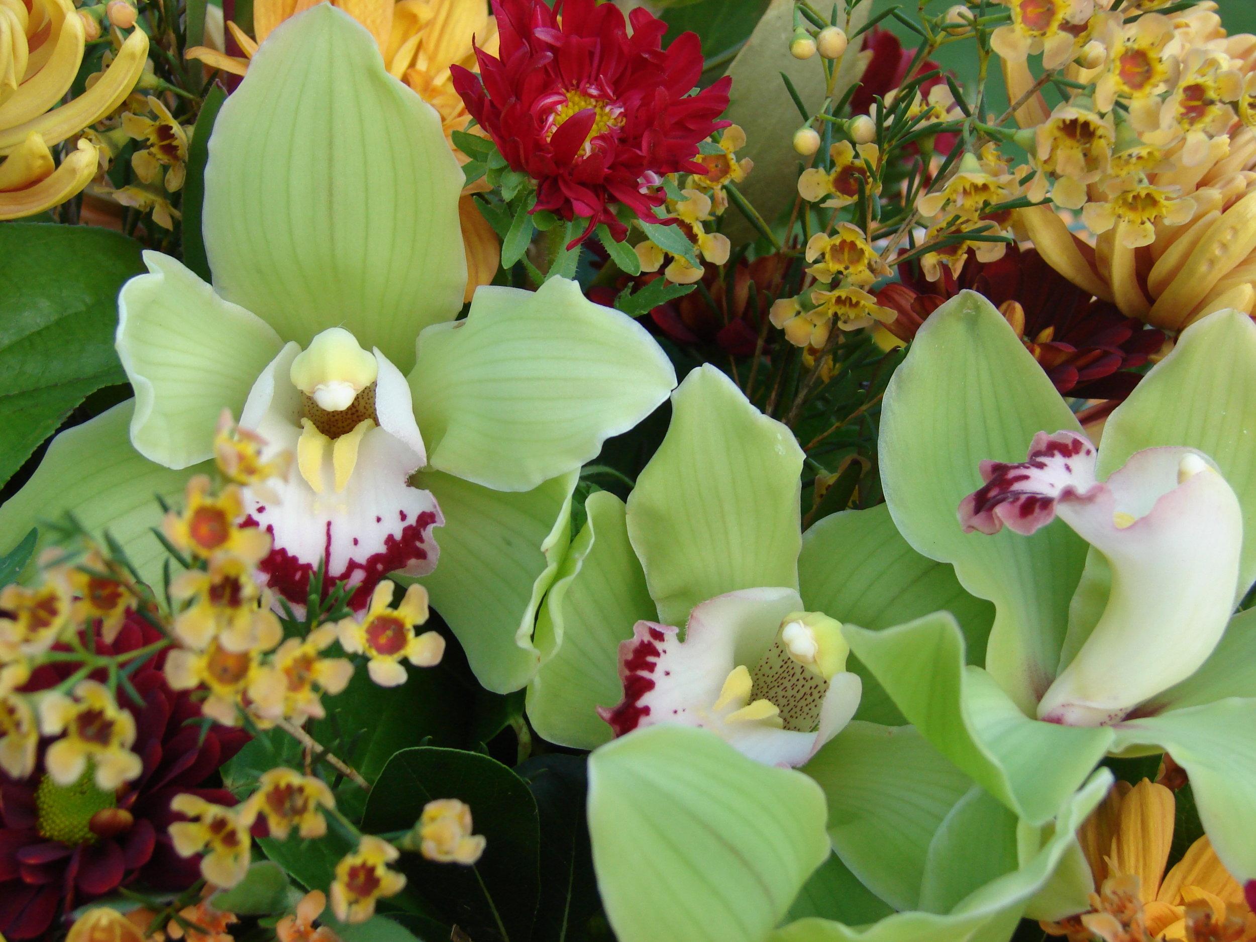 Iris and lilies.JPG