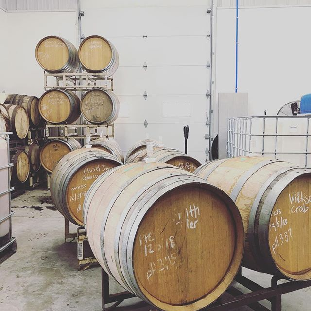 We have something special in these barrels - cider apples native fermented in neutral French oak barrels and left on lees. 3 months in they are tasting great!