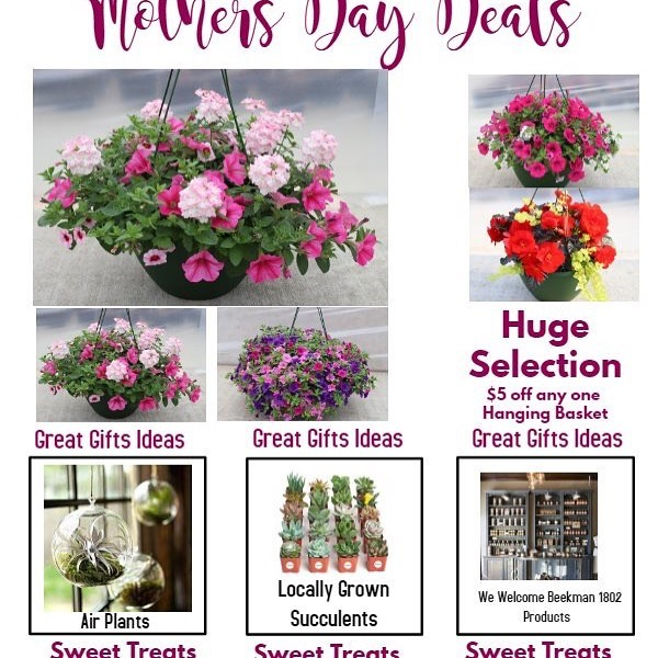 Check out our Mother's Day specials!