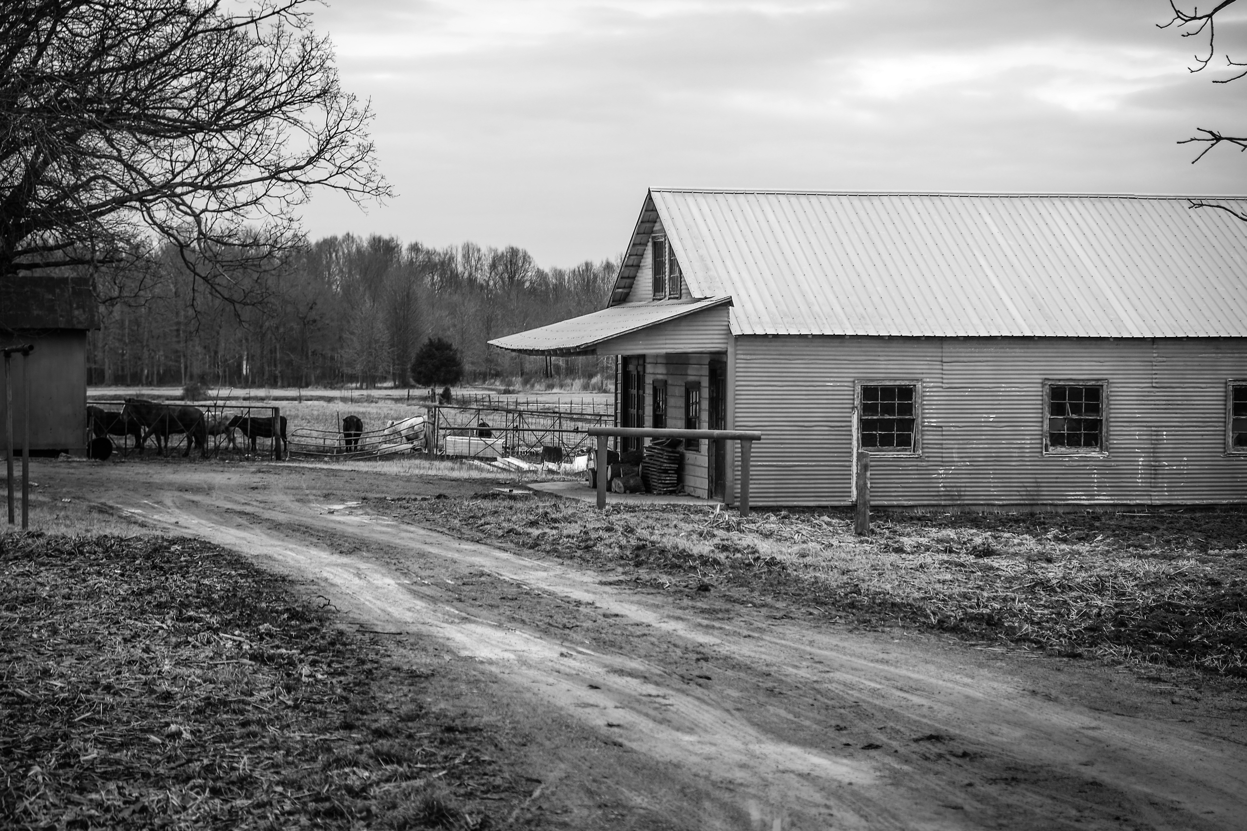 Amish Home BW 5 (1 of 1).jpg