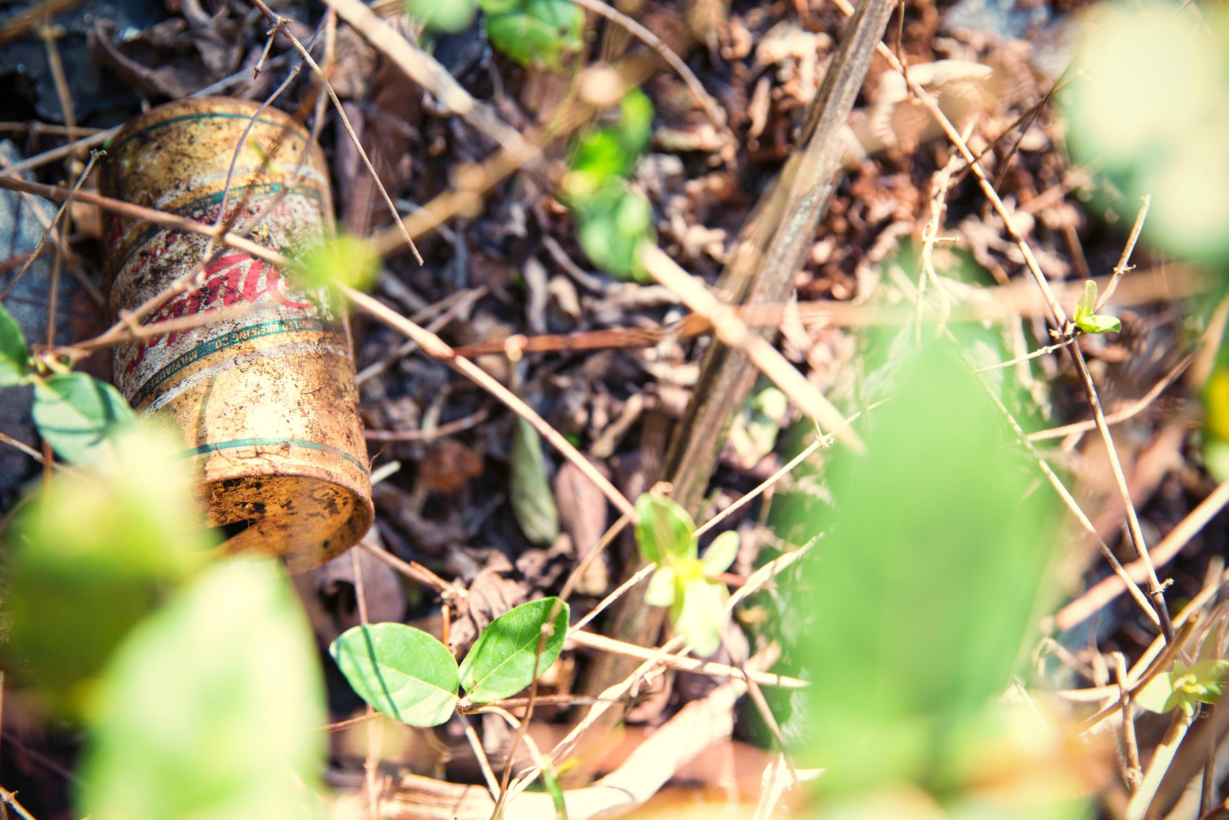 Eldorado Club Looking Beer 1.jpg