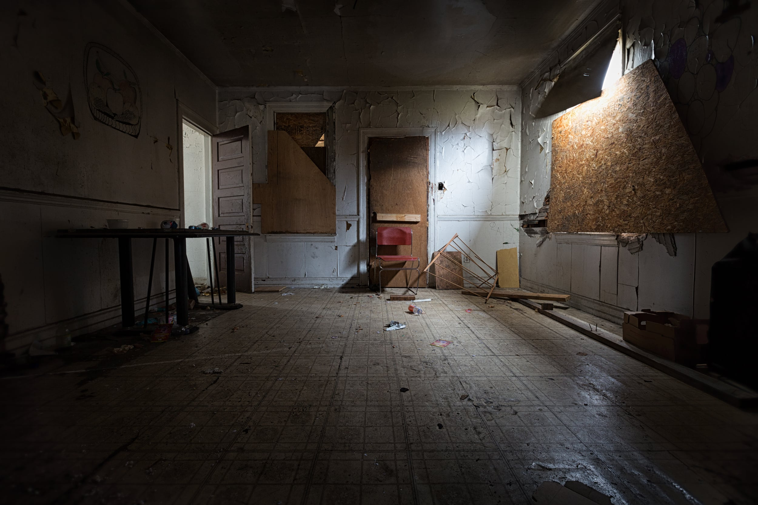 Vacant Detroit Home 2 (1 of 1).jpg