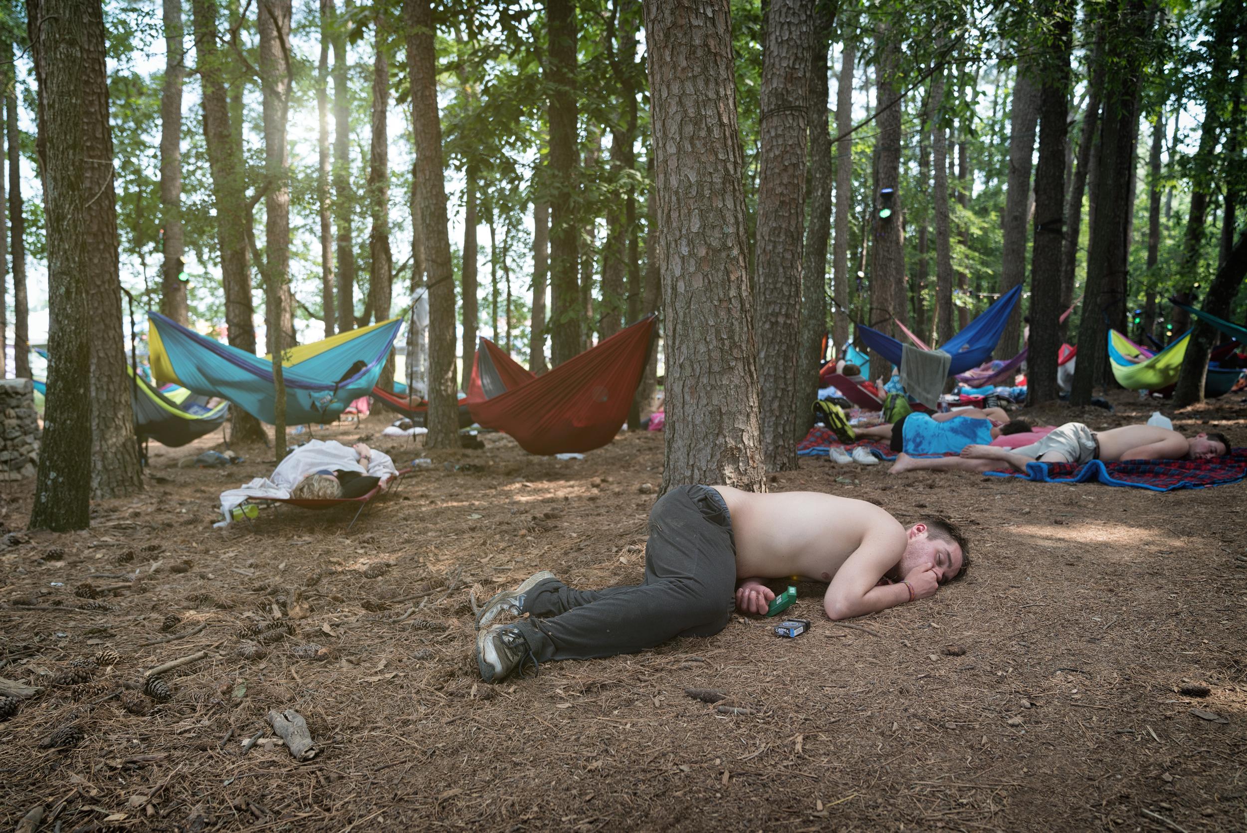 Sleeping Beauties (1 of 1).jpg