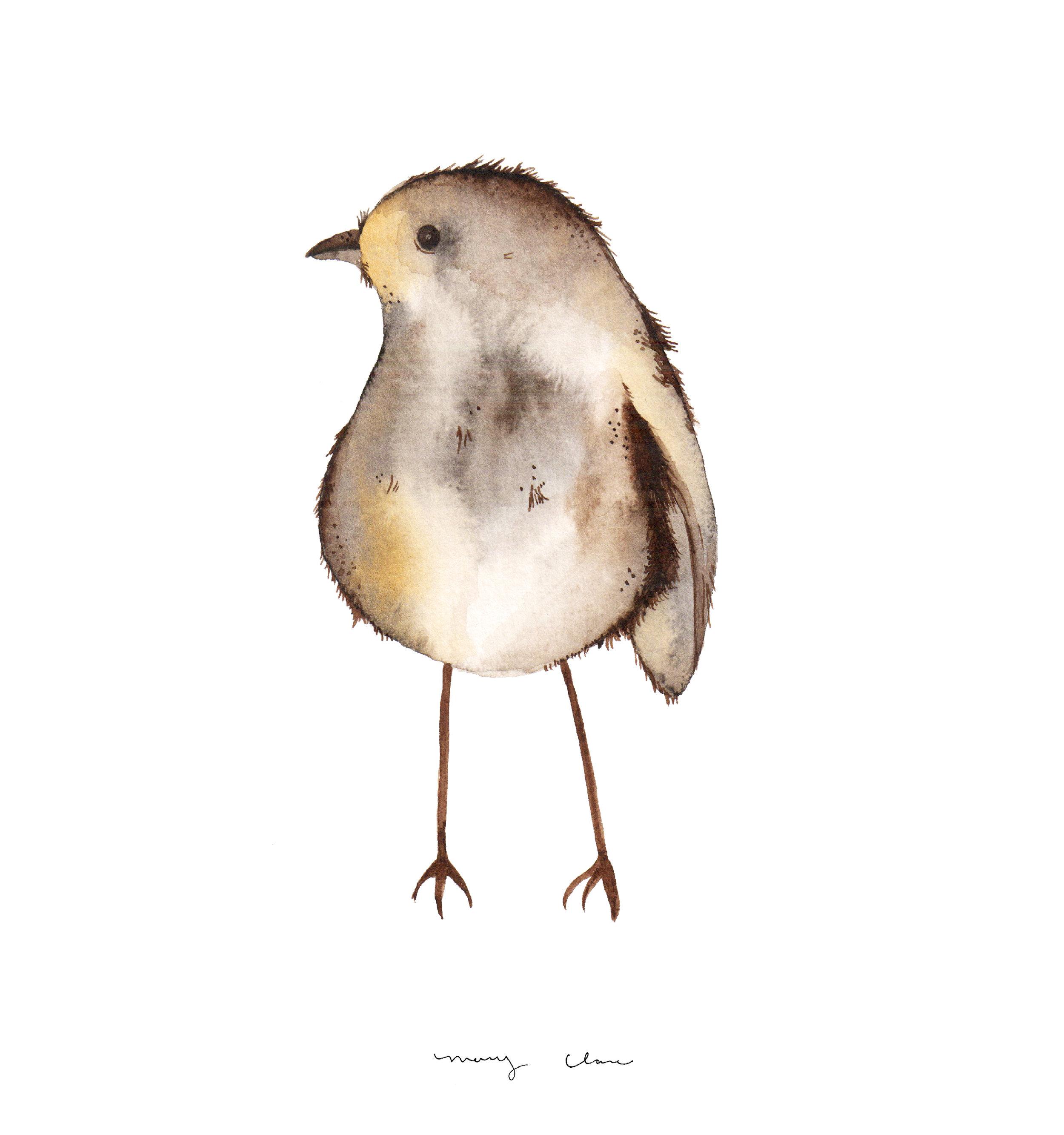 woodlandBirds-maryclarewilkie-03.jpg