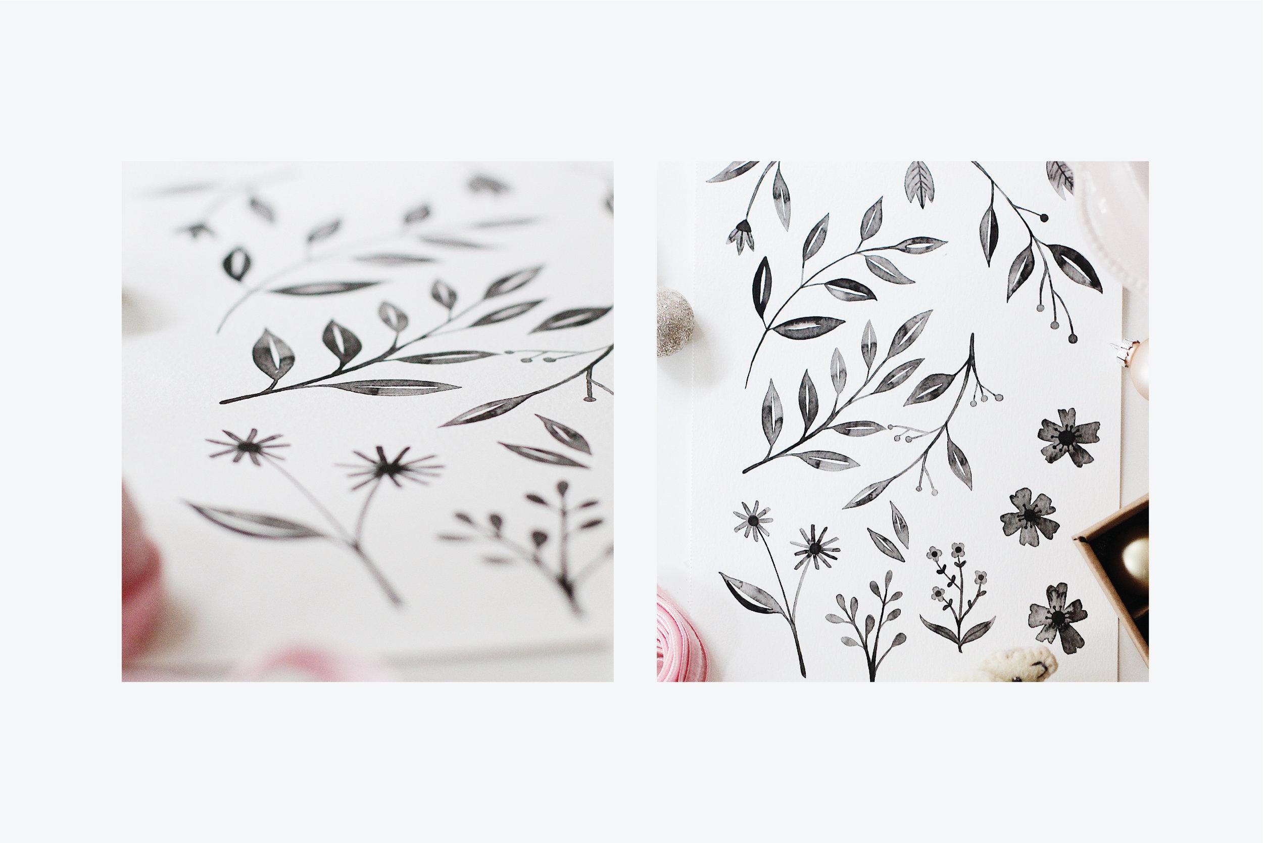 Wilkie_maryclarewilkie-inkedflowers-04.jpg