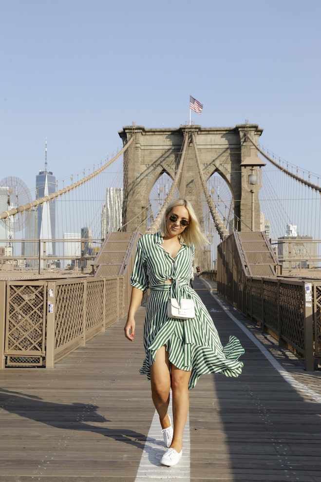 BLOGGER-SPOTS-NEW-YORK-BROOK-LYN-BRIDGE.jpg