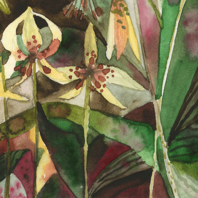 """Trout Lillies"" Detail"