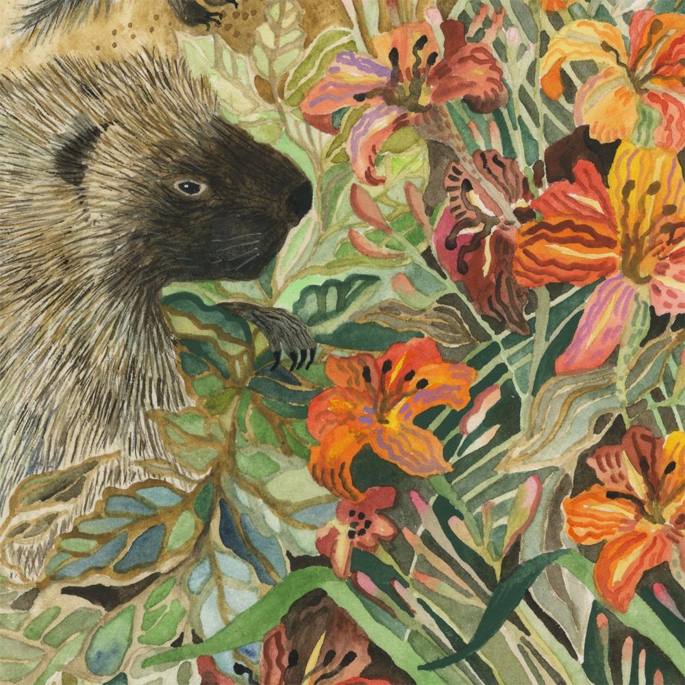 """""""Porcupines"""" detail"""