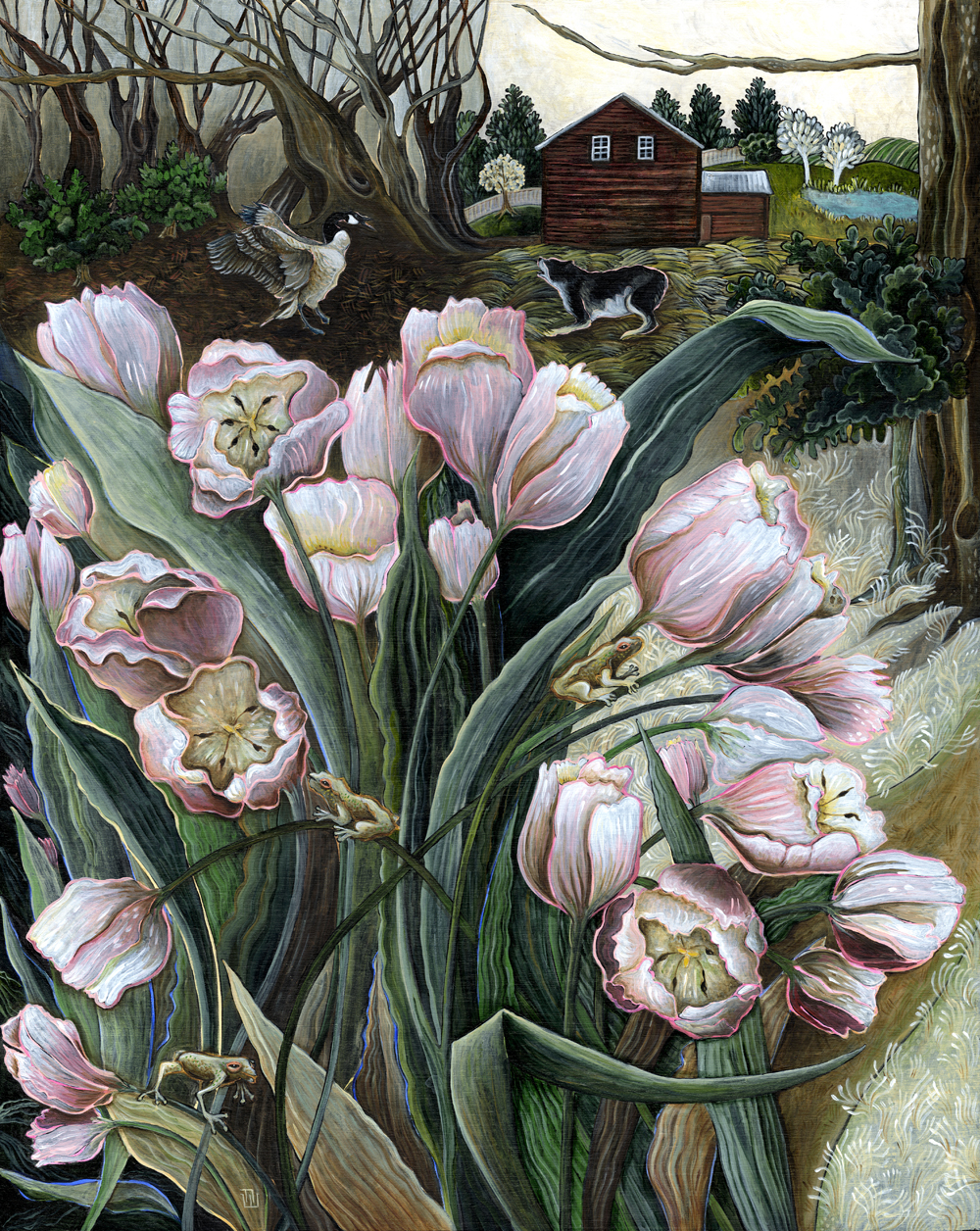 """Pink Tulips"""