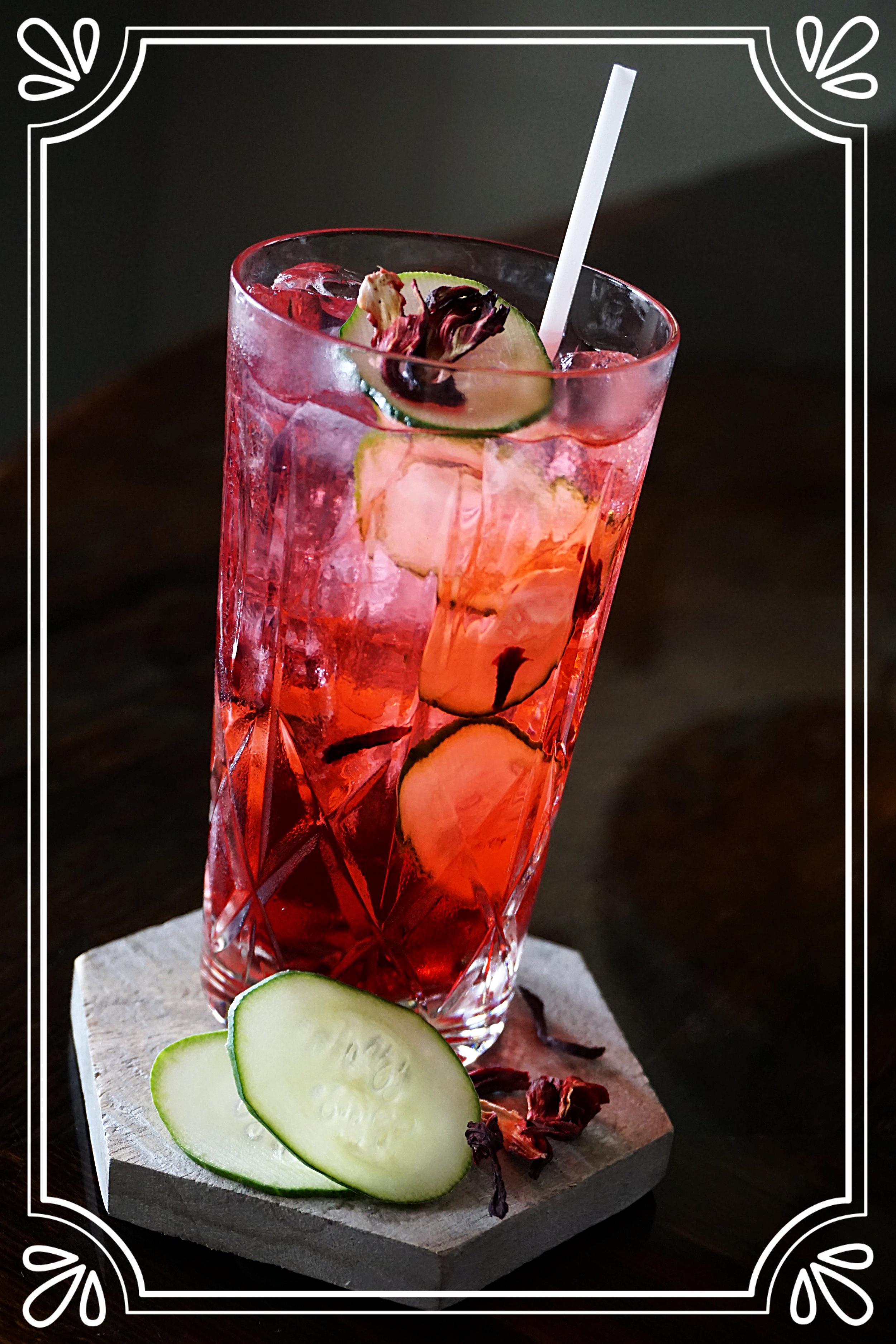 Hibiscus Gin & Tonic