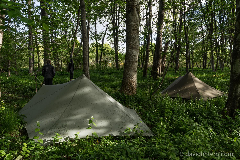 a final, sheltered camp in a miniature Scottish jungle