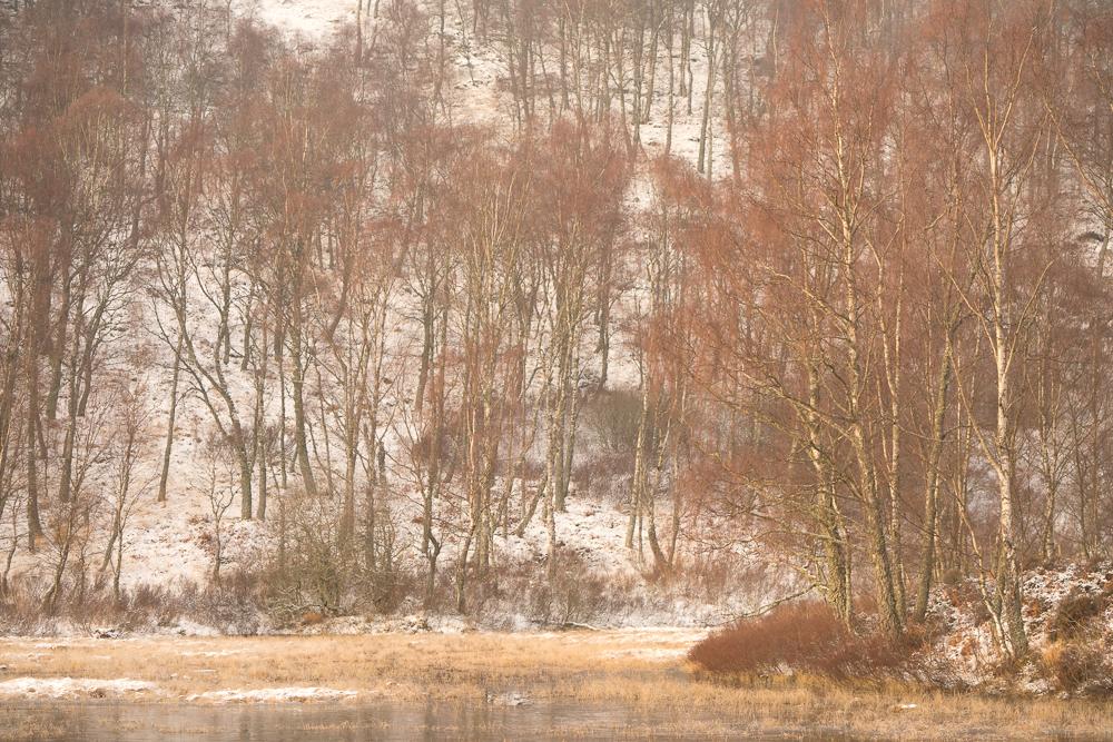 Lintern-00657.jpg