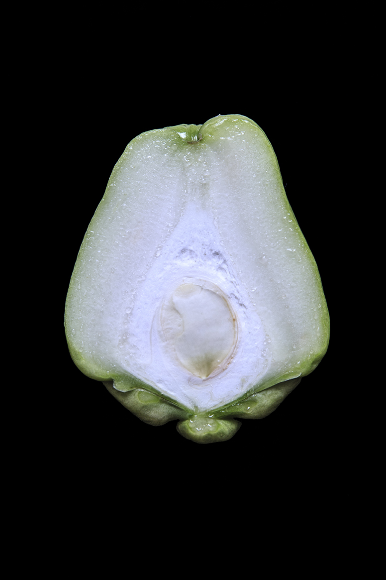 Chayote, Day One
