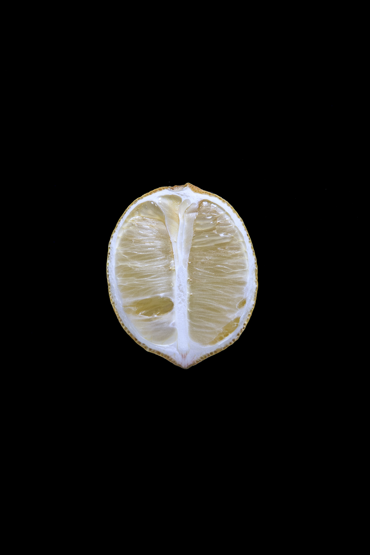 Lemon, Day Five