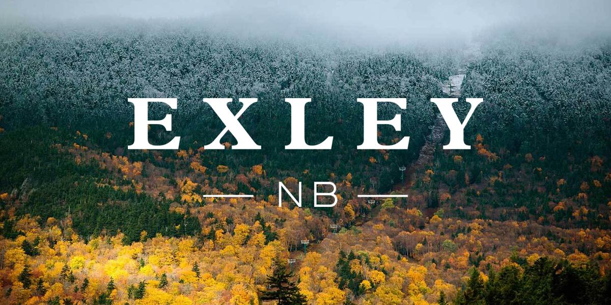 BREAD COLLECTIVE_EXLEY_BRANDING_HERO2.jpg