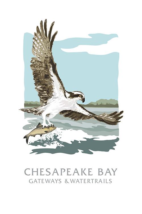 Chesapeake_Icons_Marketing_WEB-12.jpg