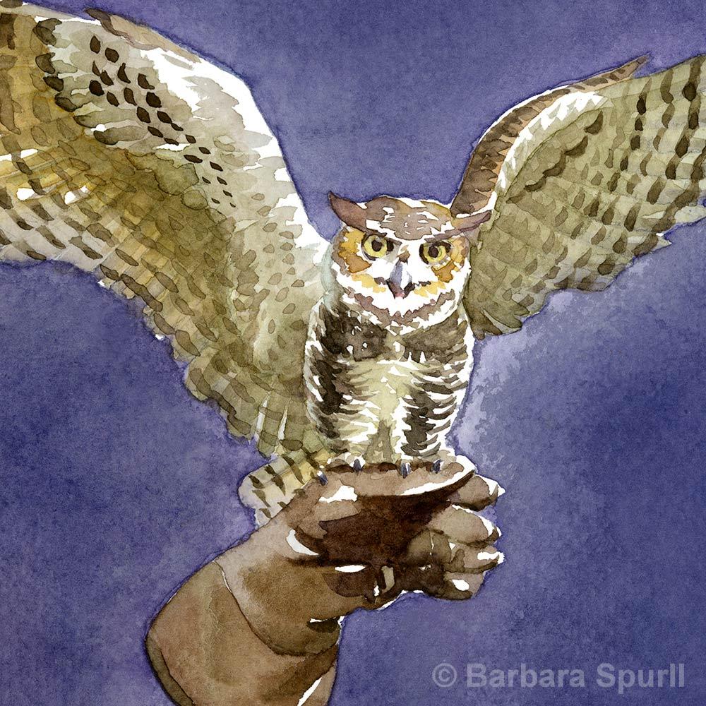 The-Moon_owl-detail_1000_Op.jpg