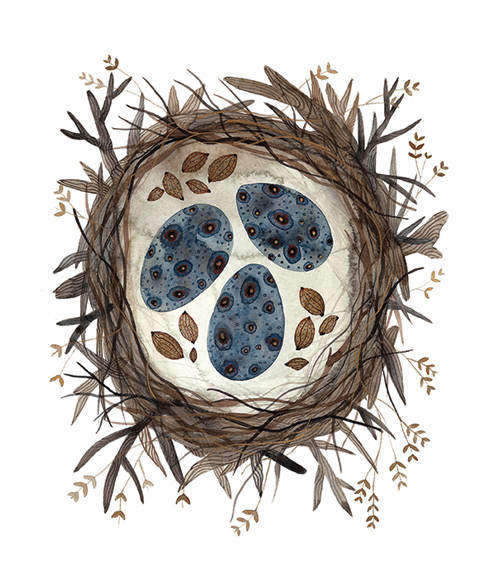 Boreal Nest,  watercolor on paper, Golly Bard | Holly Ward Bimba   © all rights reserved