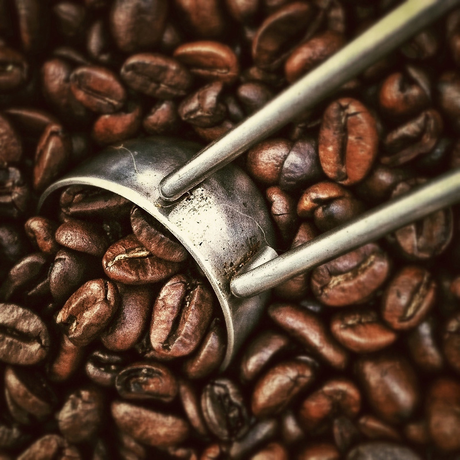 Connect-Global-Coffee-Can-Change-the-World.jpg