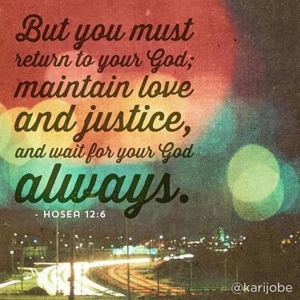 Hosea 12 6