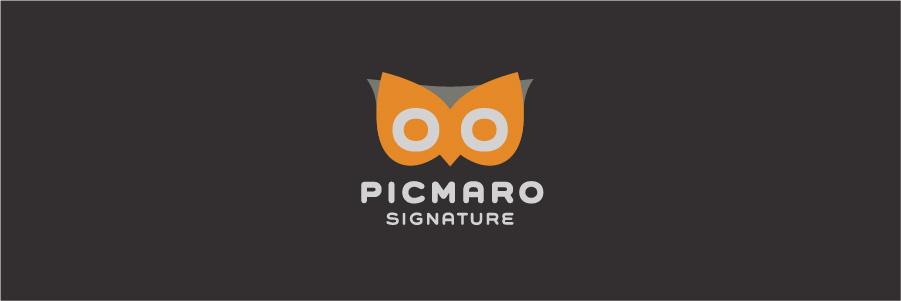 logo_picmaro_sig.jpg
