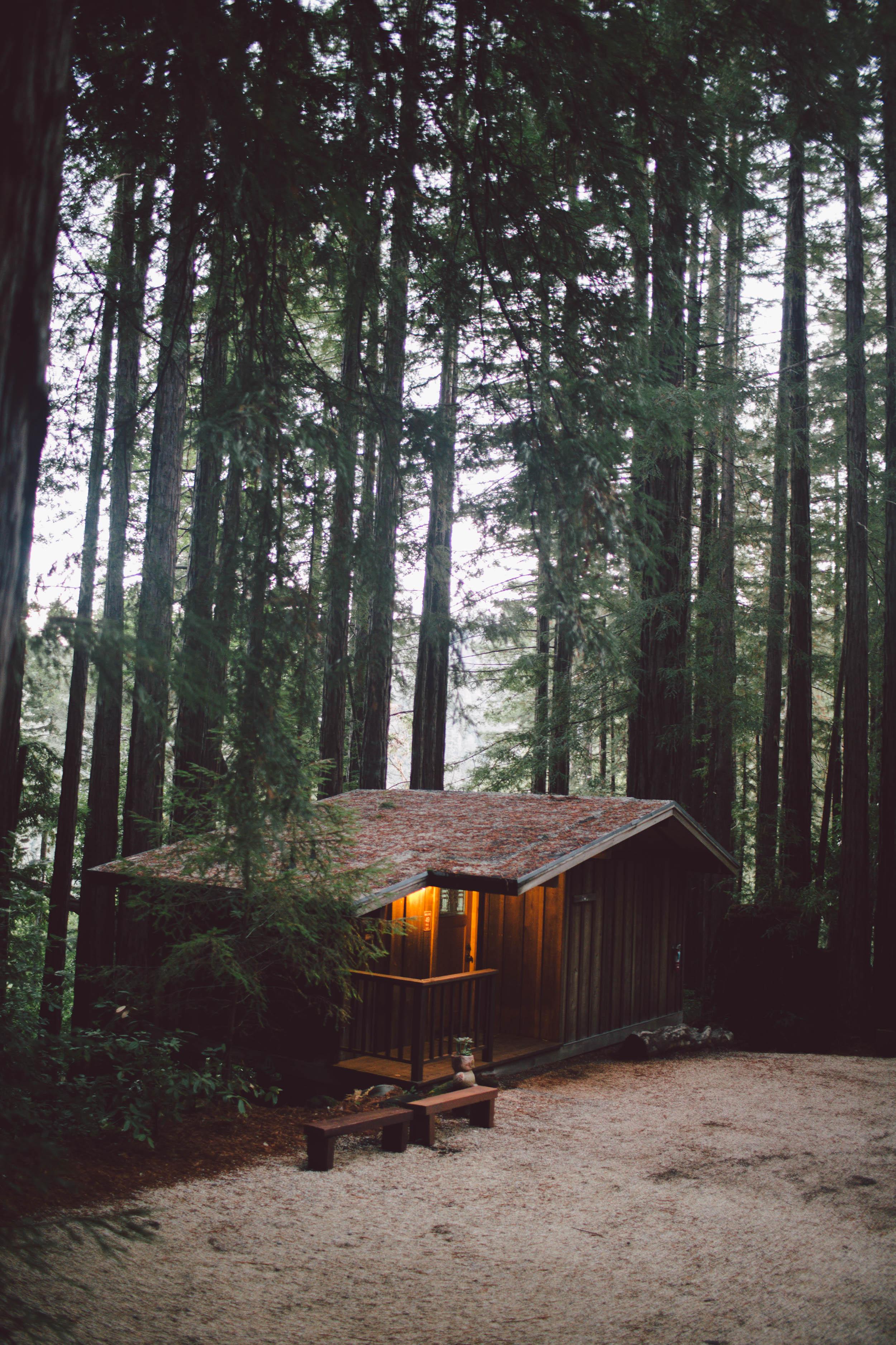 sequoia-retreat-center-wedding-california-redwoods-woodland