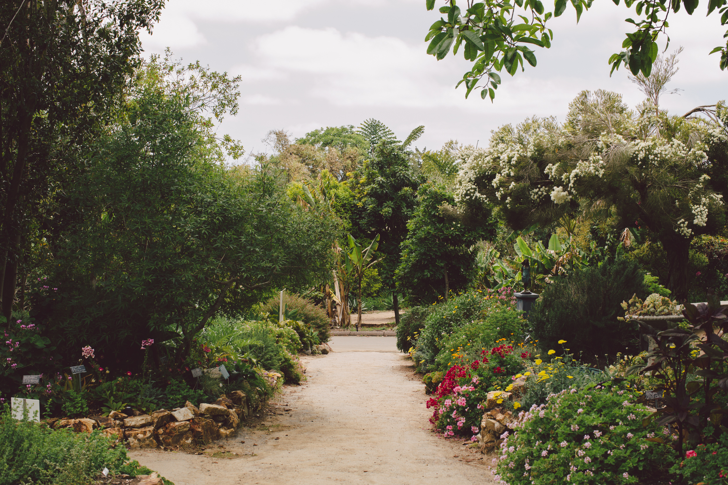 san diego-botanical-garden-boho-wedding
