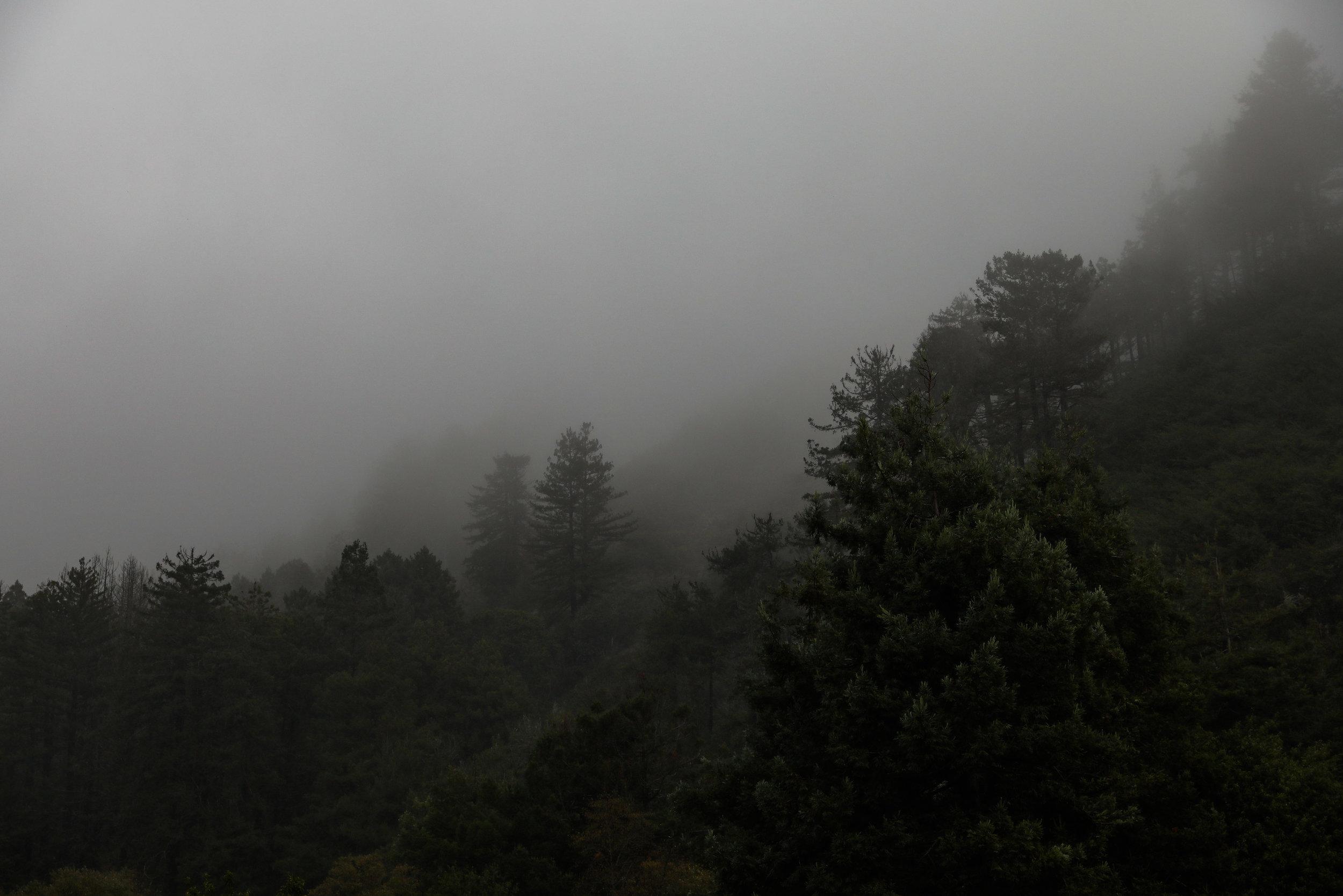 california-6565.jpg