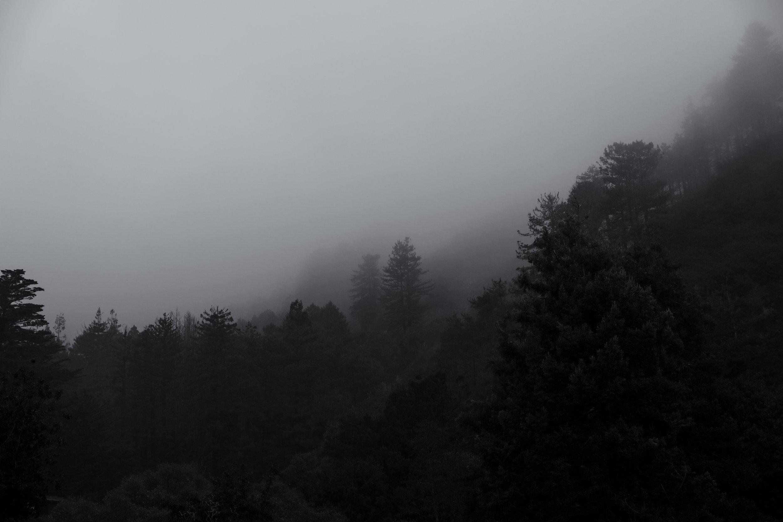 california-6566.jpg