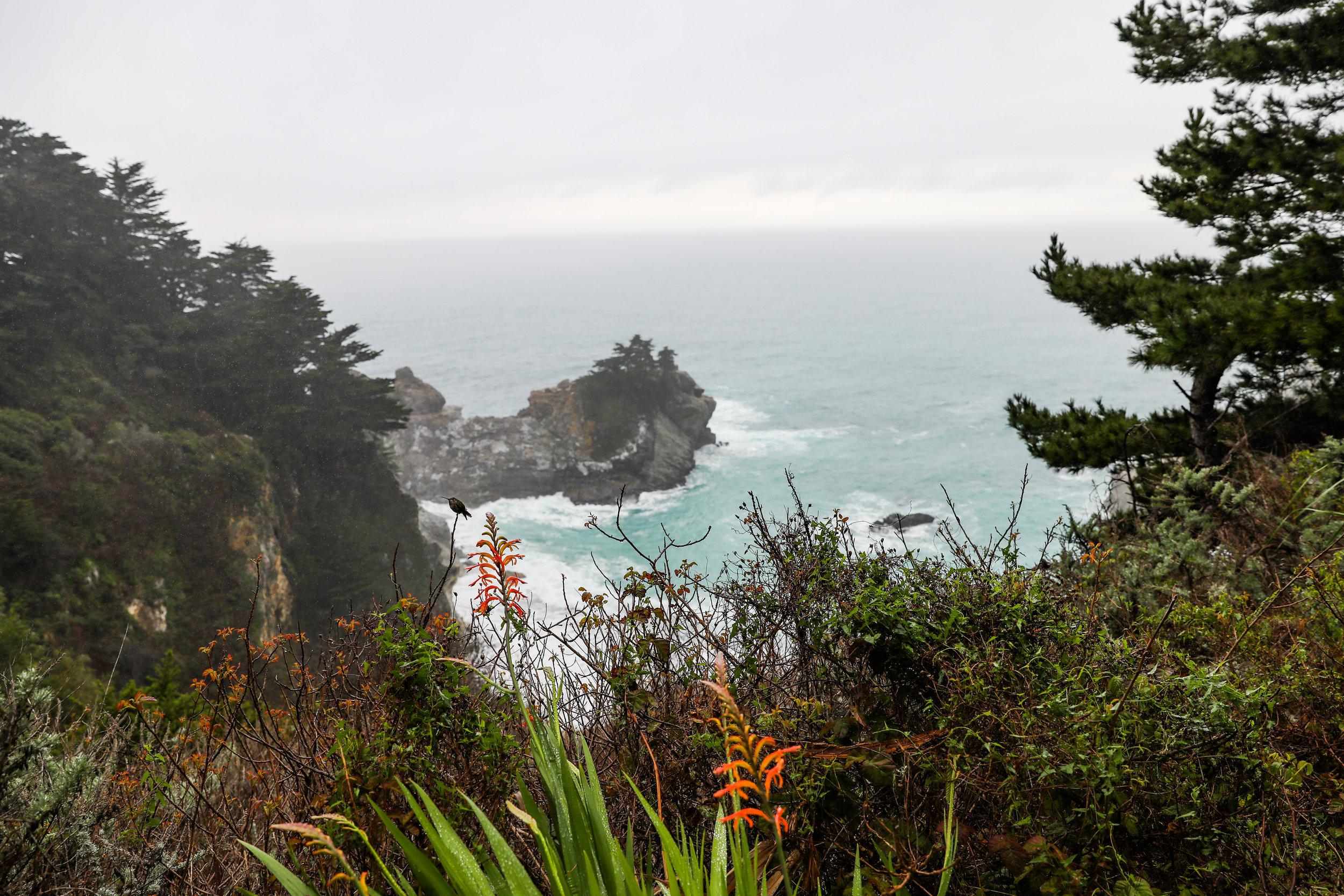 california-6651.jpg
