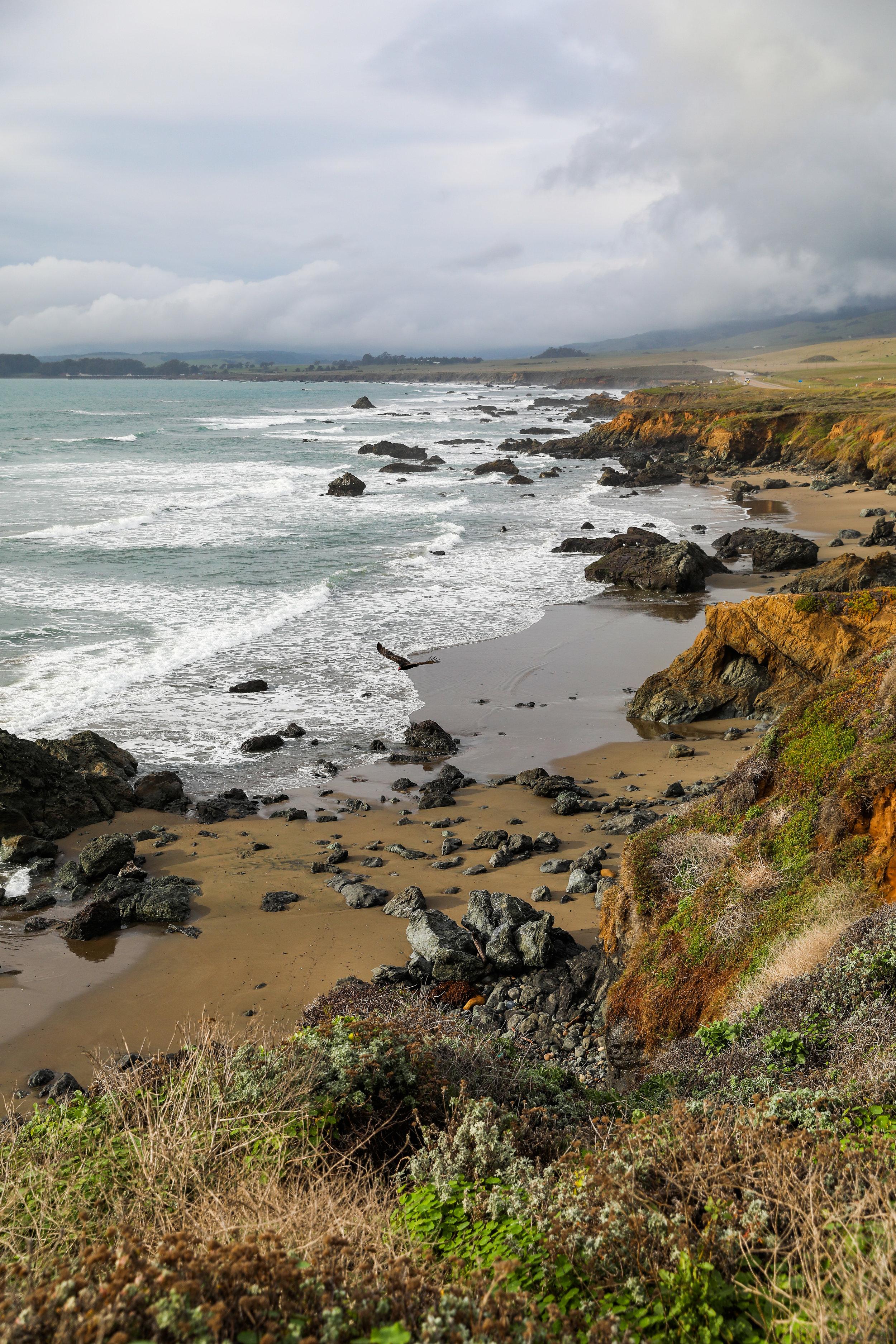 california-6663.jpg