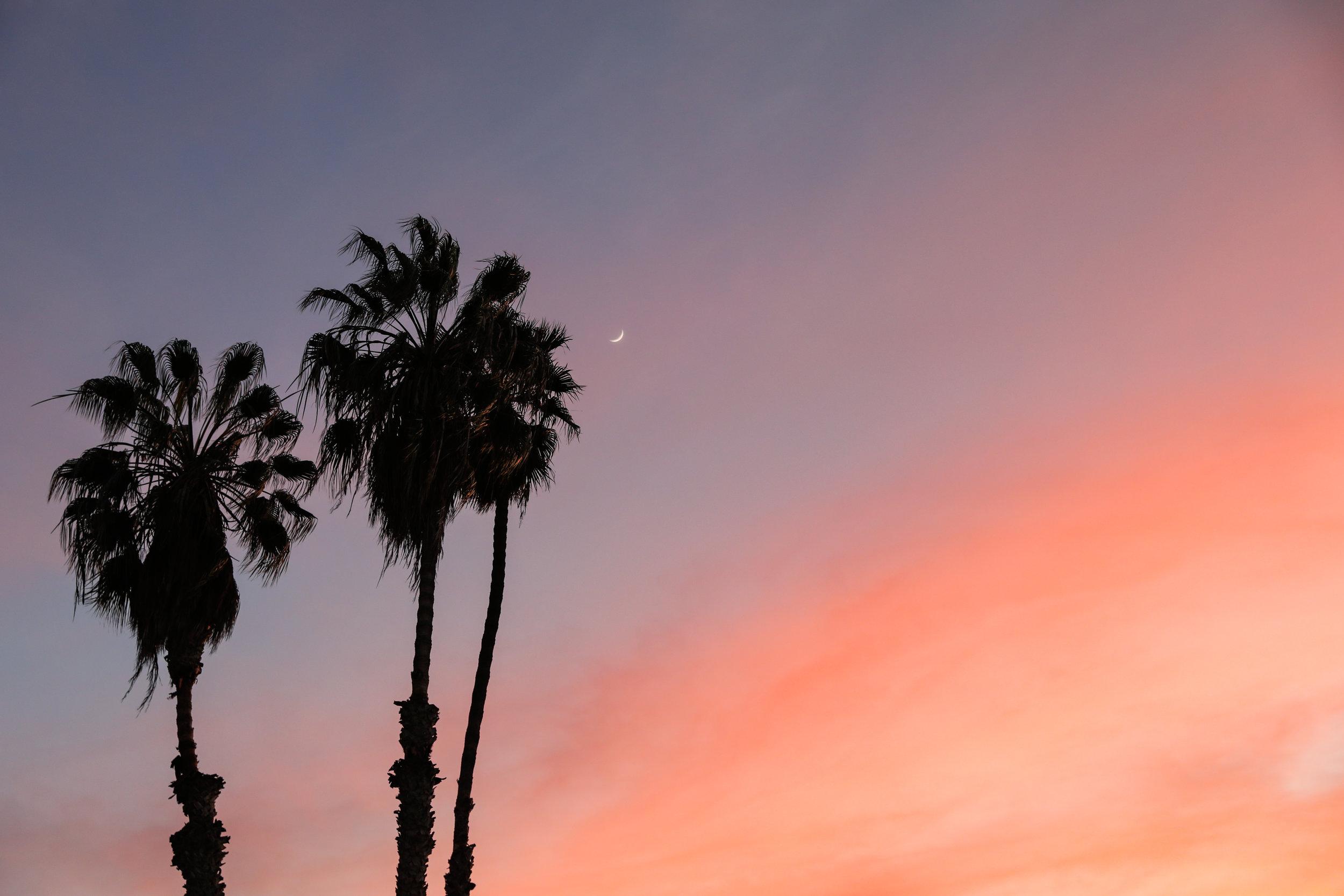 california-6819.jpg