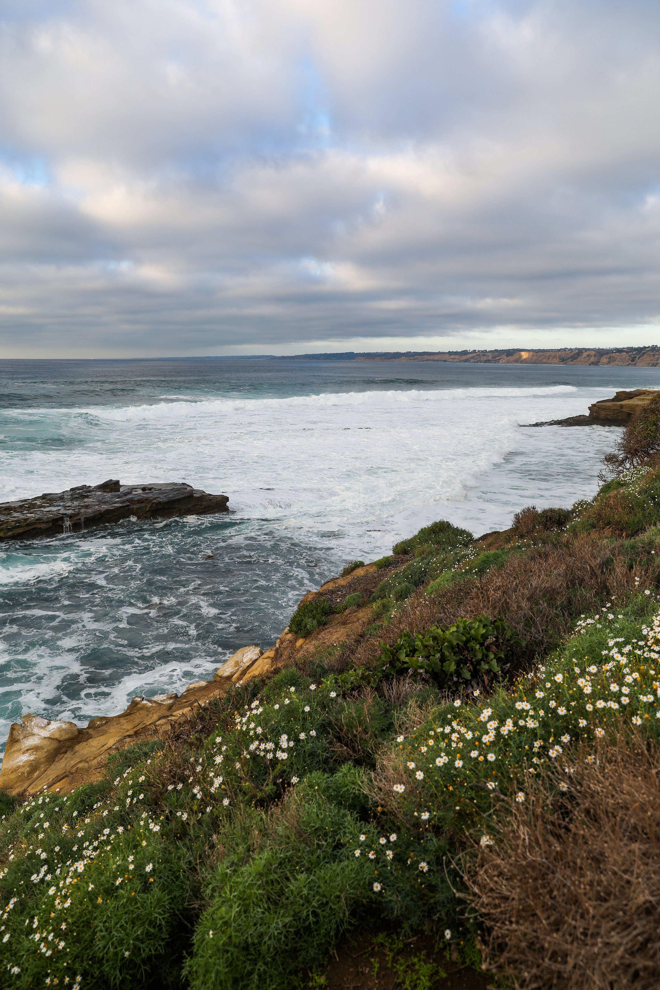california-6858.jpg