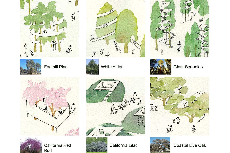 3-bunch-design-tree-people-native-tree.jpg