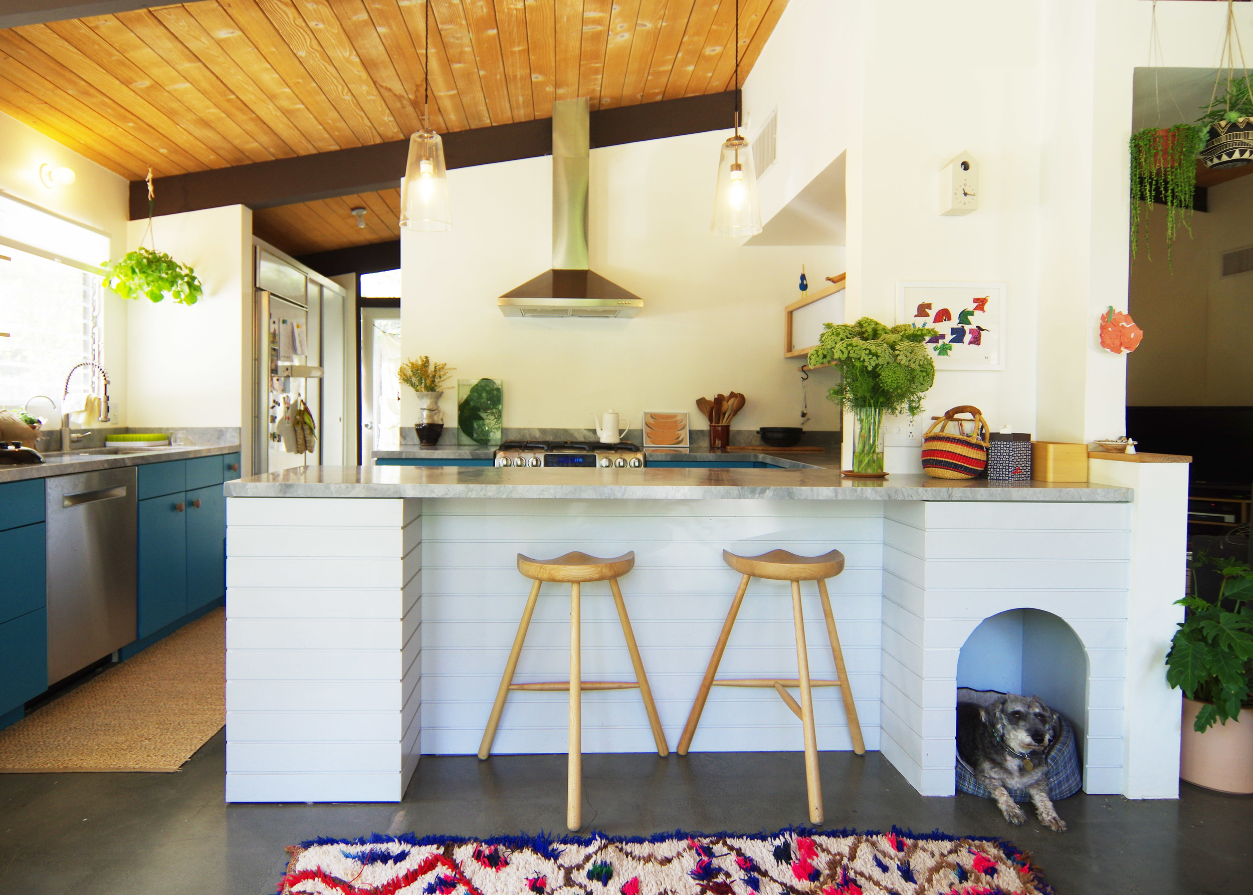 bunch-design-itabashi-residence--kitchen-front-dog.jpg