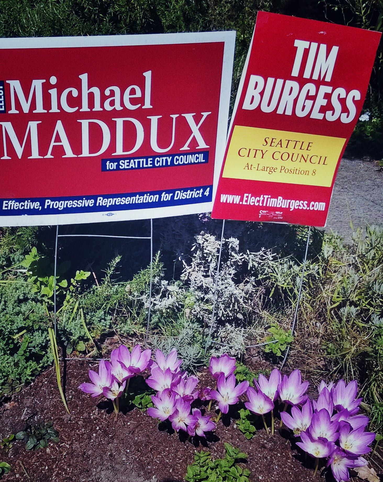 Maddux Burgess.jpg