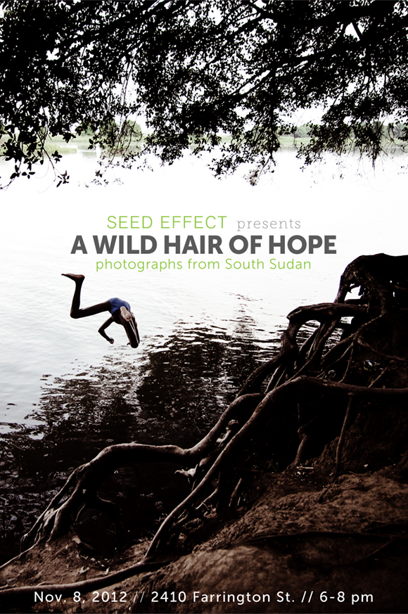 WildHairPoster