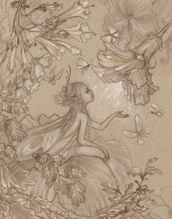 faerie_sketch.jpg