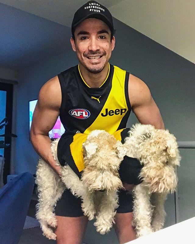 Tiger Country! Winner, winner, chicken dinner! 🍗 #afl #richmondtigers #tigers #richmond #footy #australia #grandfinal #wirefoxterriers