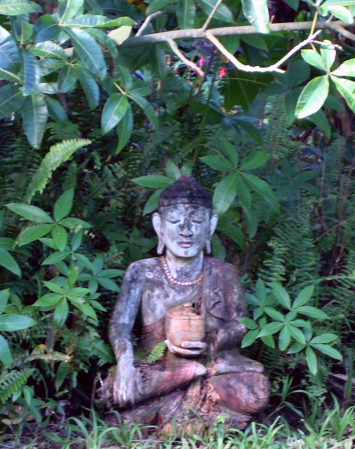 Maui January 2008 241.jpg