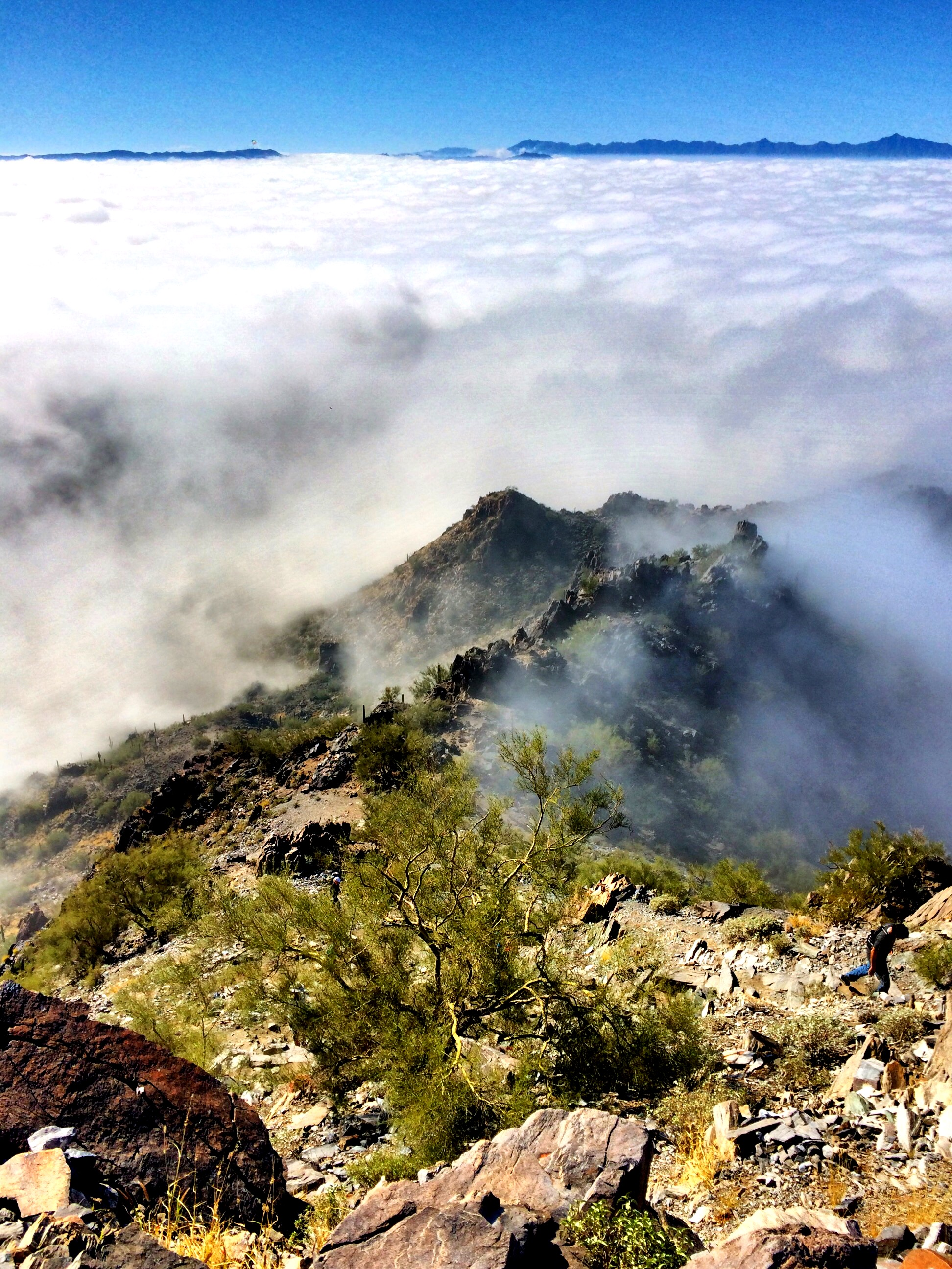Fog at Piestewa Peak