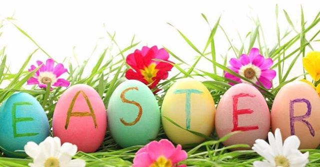 Happy Easter!🐰