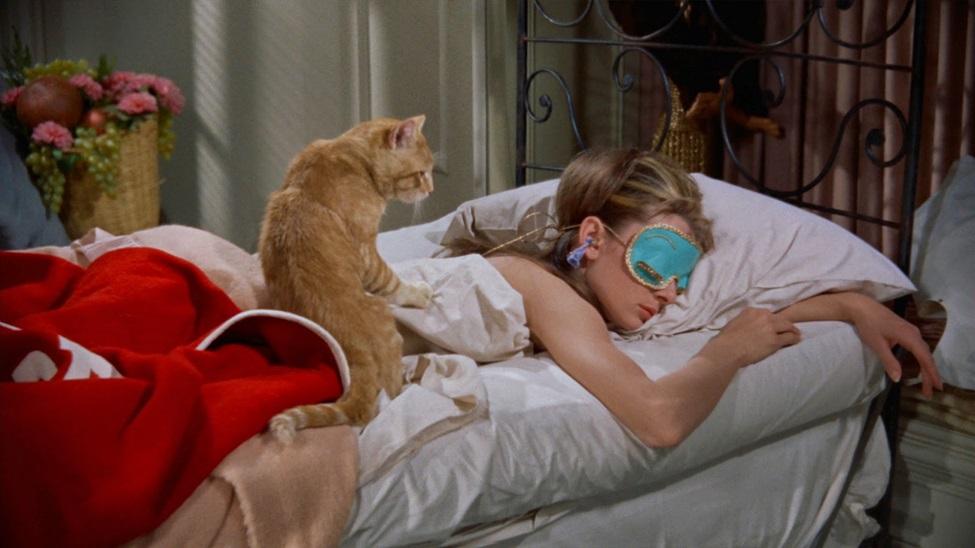 Breakfast at Tiffany's Cat 01.jpg