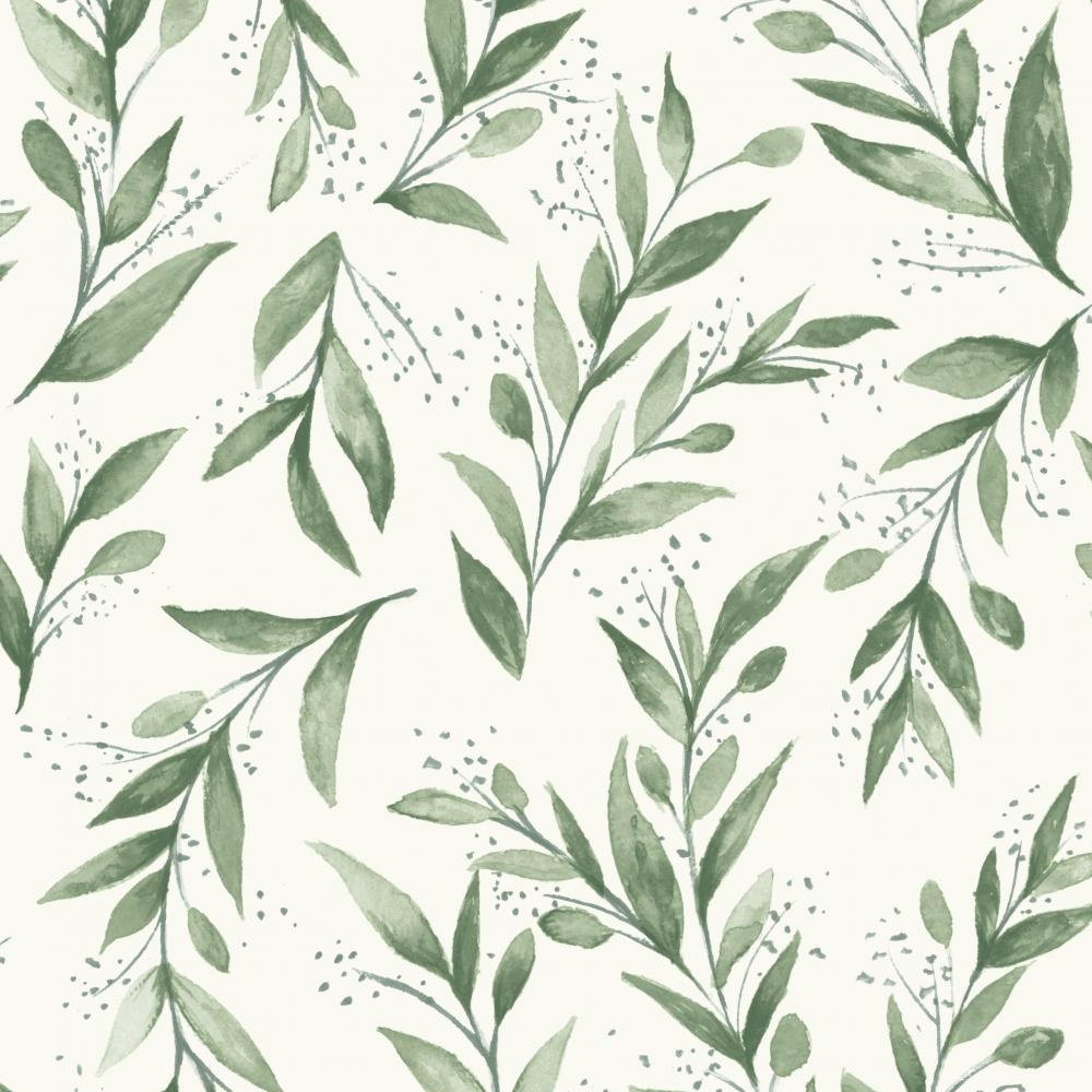 Olive Branch  ME1535