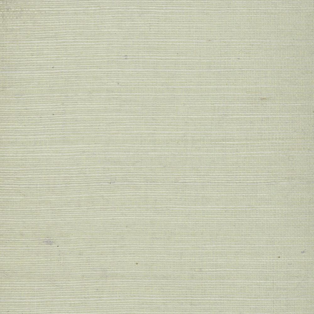 Plain Grasscloth  VG4404