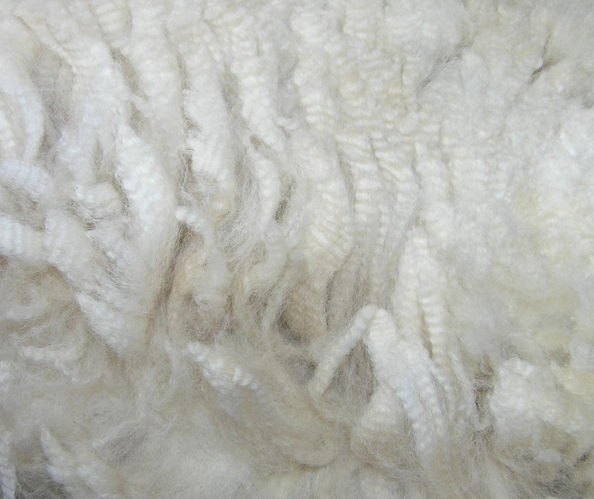 Exquisite fleece crimp..