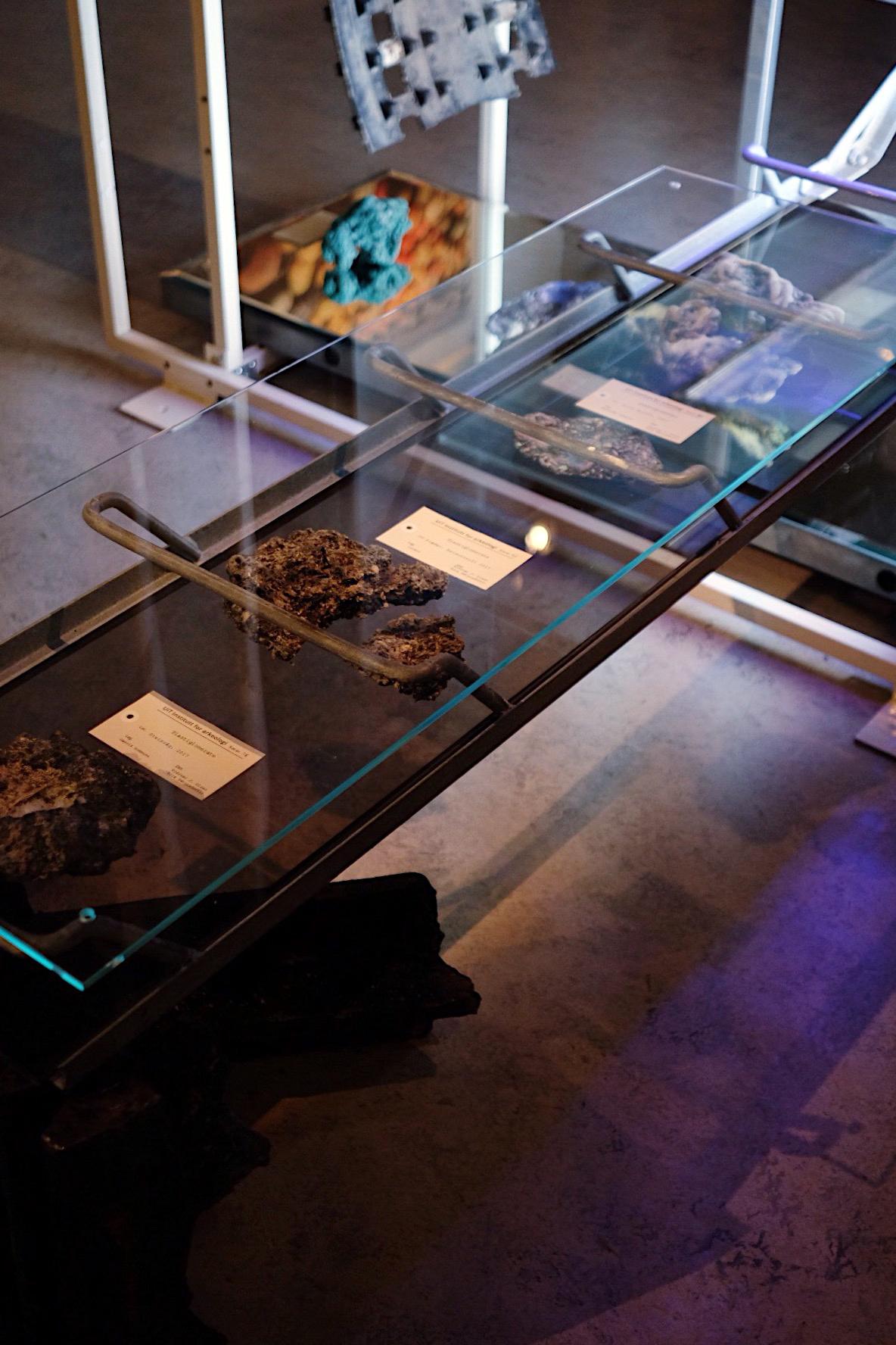 jsigharas-arv-exhibition-46.JPG