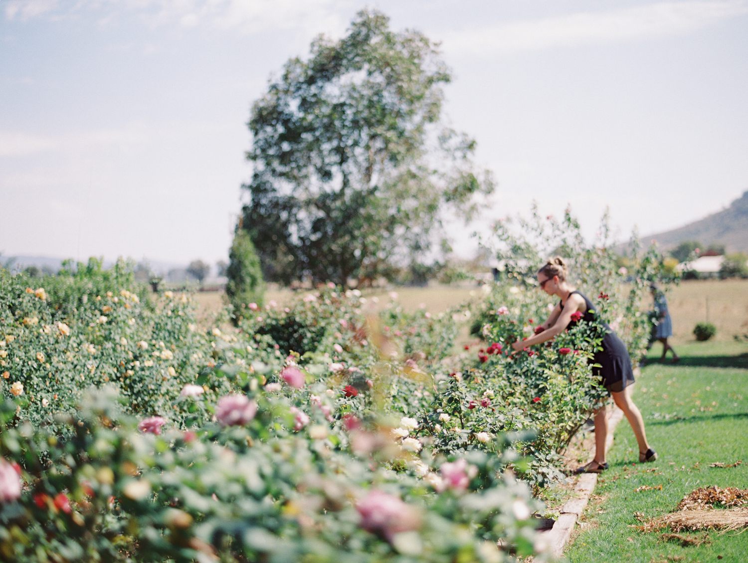 Oh Flora Getaway by Kylie Mills Photography-13.jpg