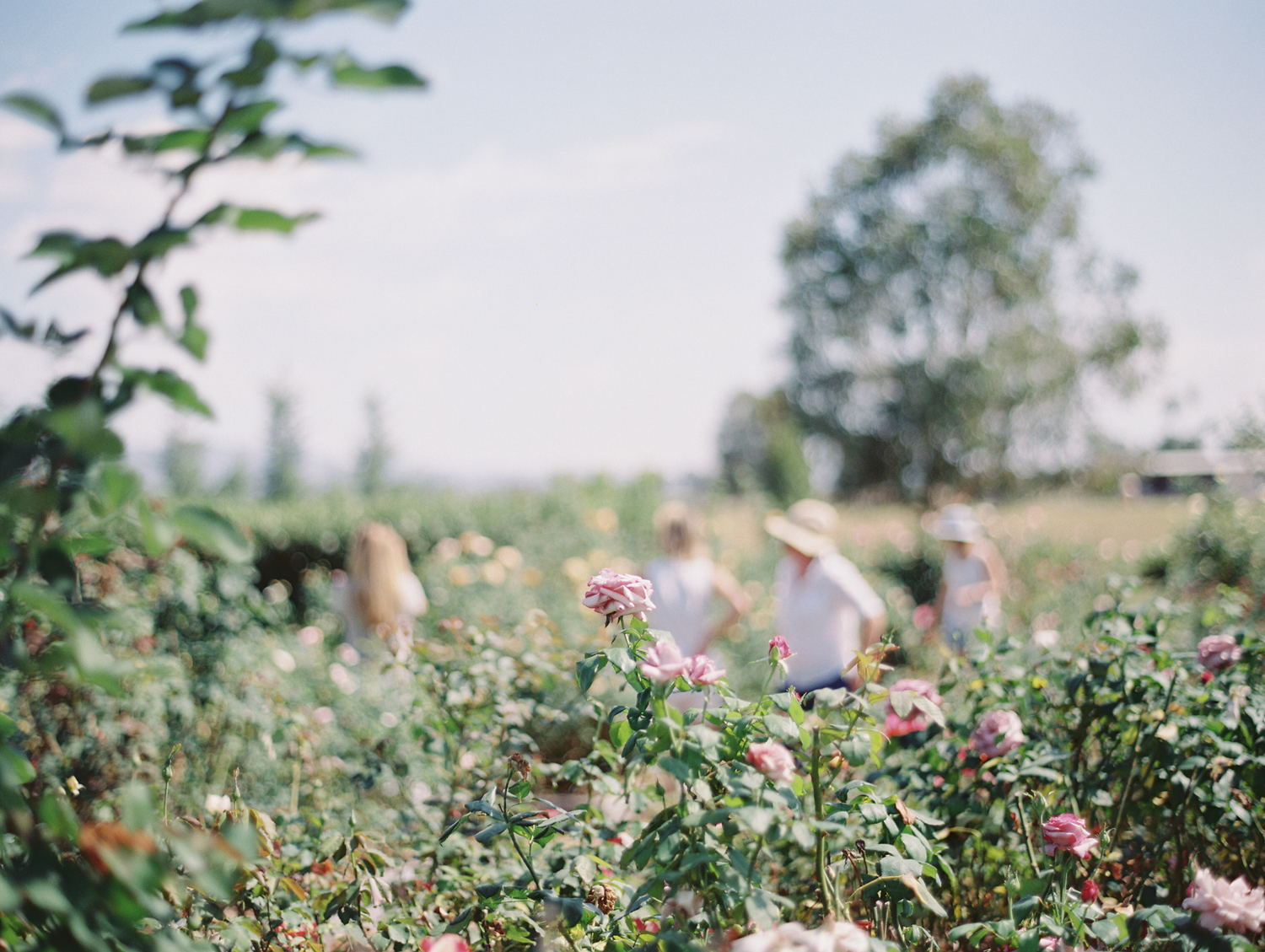 Oh Flora Getaway by Kylie Mills Photography-19.jpg