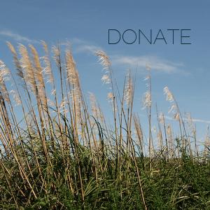 Donate-text.jpg